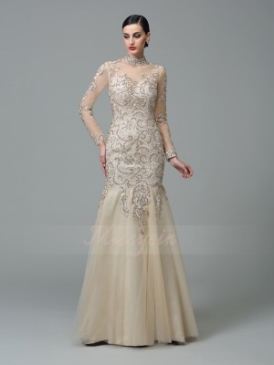 Sheath/Column Long Sleeves High Neck Applique Floor-Length Net Dresses