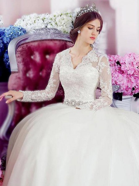 A-Line/Princess Long Sleeves V-neck Tulle Cathedral Train Applique Wedding Dresses